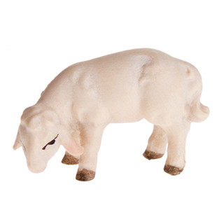Abendlandkrippe Lamm äsend